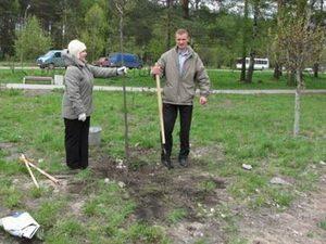 Мэр Казани сказал, что каждый в ответе за то дерево, которое посадил
