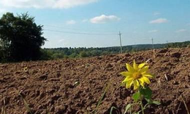 В Татарстане активно предоставляют земельные участки семьям