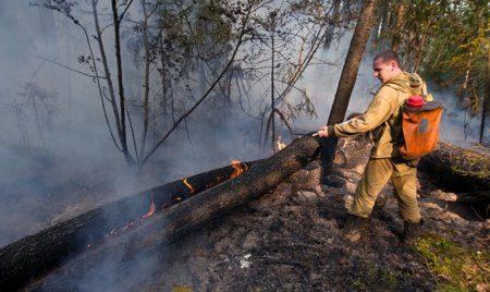 С 1 по 20 июля будет действовать противопожарный режим